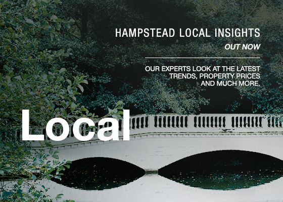 Hampstead Local Insights Report