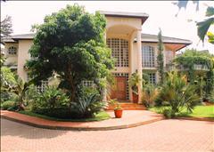 Nyari, Central Drive