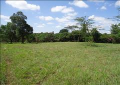 Langata, Mukoma Road