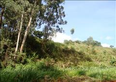 Kitisuru, Off Ngecha Road