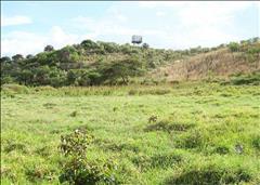 Naivasha, Malewa Bay