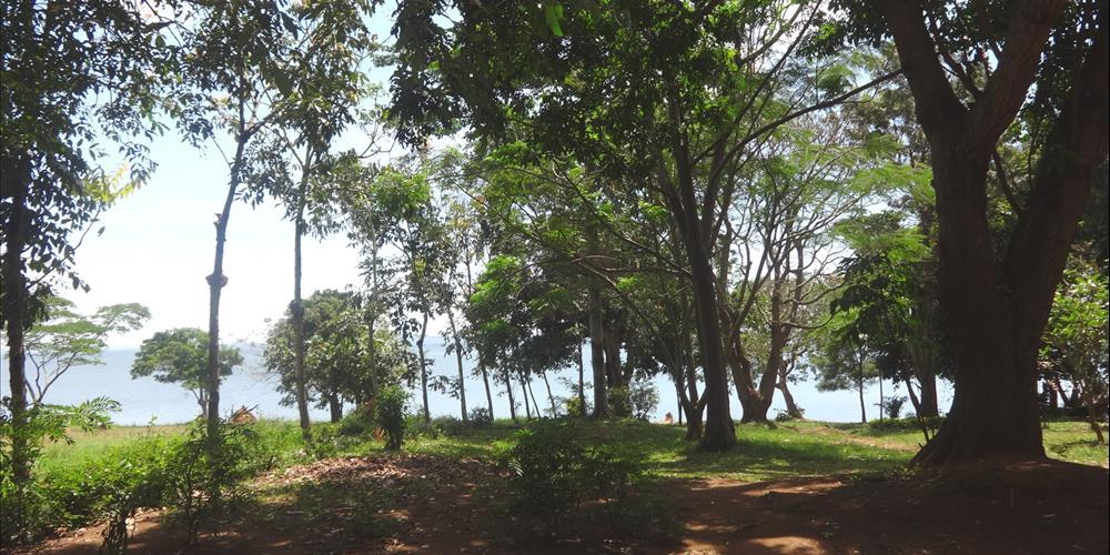 RS10208,Garuga-Entebbe