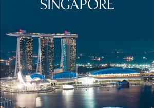 Singapore Buying GuideSingapore Buying Guide - Residential